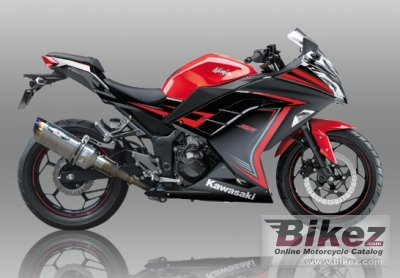 2015 Kawasaki Ninja 250 Beet specifications and pictures
