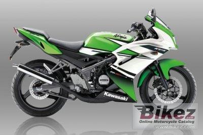 2015 Kawasaki Ninja RR Special Edition Specifications And