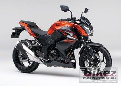 2015 Kawasaki Z250