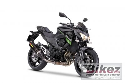 2017 Kawasaki Z800 e version Performance