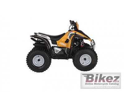 2009 Keeway ATV 100 photo