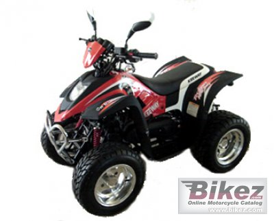 2010 Keeway ATV 100 photo