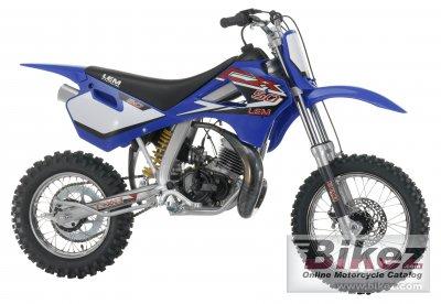 2006 Lem CX3