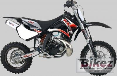 2007 Lem RX 65