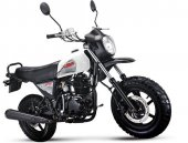 2012 Lifan LF100-C photo