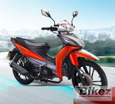 2020 Lifan PK110F