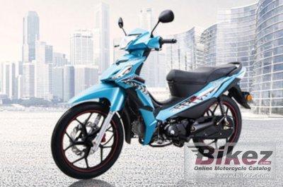2020 Lifan PKS110