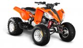 2013 Loncin LX200ATV-S Bull photo