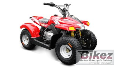 2013 Loncin LX50ATV-2 Kitten photo