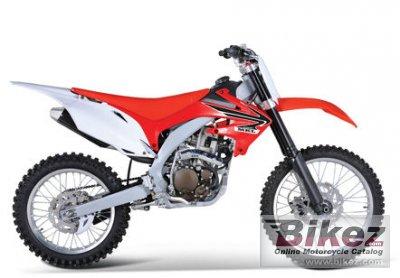 2010 Mikilon D10 250S