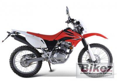 2010 Mikilon D32 250