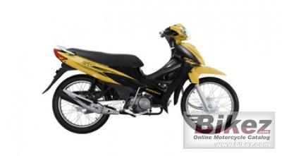 2011 Modenas CT100