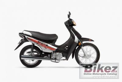 2020 Motomel Blitz 110 V8