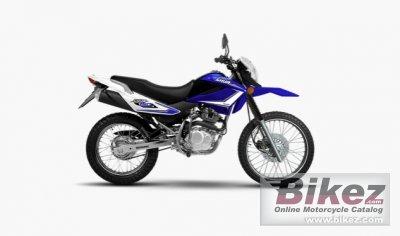 2020 Motomel Skua 150 V6