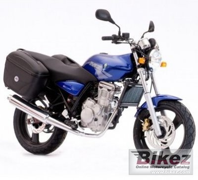 2008 MZ RT-Striker 125 photo