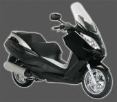 2009 Peugeot Satelis 125 Excecutive photo