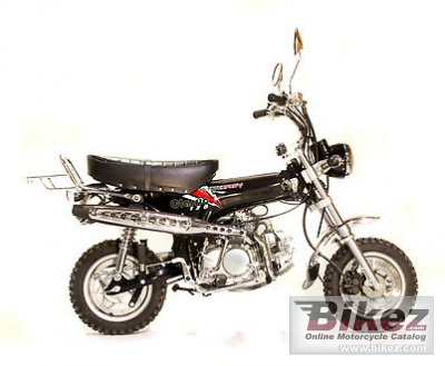 2012 Pitster Pro Classic Pro 125