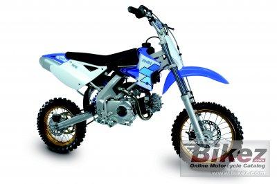 2006 Polini XP 4T 110