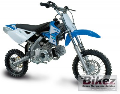 2010 Polini XP 4T Cross photo