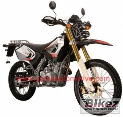 2011 Puma Rottaler 125 Cross photo