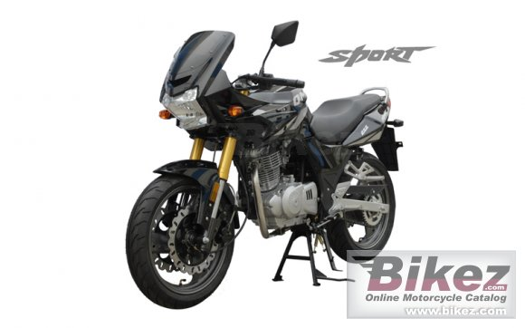 2013 Qingqi Sport QM125-2D photo