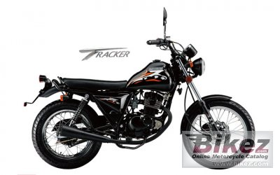 2013 Qingqi Tracker QM125GY-2D photo