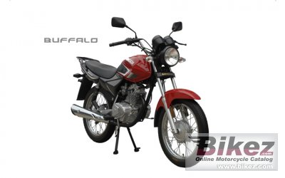 2013 Qingqi Buffalo QM125-10R