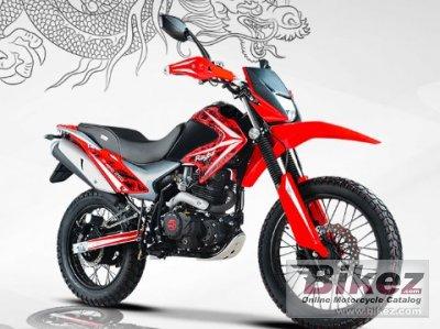 2020 Raybar  Dragon 250
