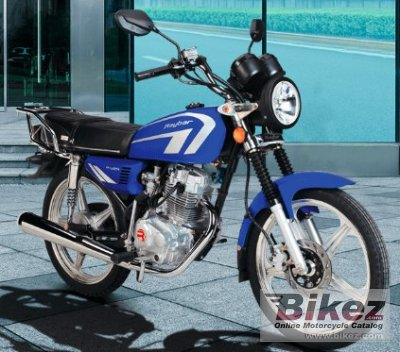 2020 Raybar  Pro 125
