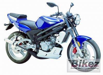 2007 Rieju RS2 NKD