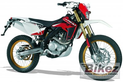 2011 Rieju Marathon Pro 200 SM specifications and pictures