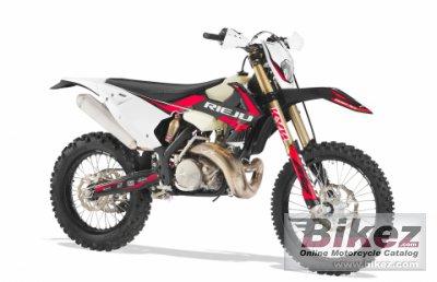2021 Rieju MR 300 Racing