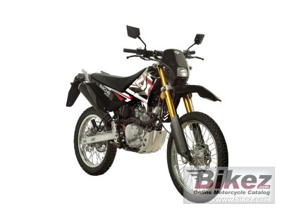 2011 Sachs ZX 125 Enduro photo