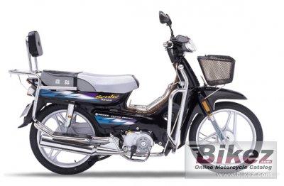 2008 Senke SK100
