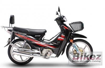 2021 Senke SK110-A