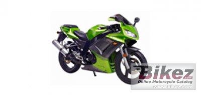 Shineray XY-250