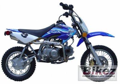 2005 Skyteam ST110