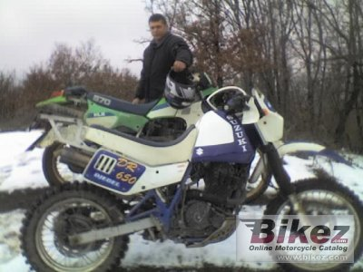 1991 Suzuki DR 650 R Dakar (reduced effect) photo