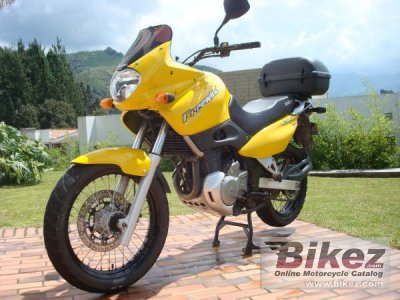 2003 Suzuki XF 650 Freewind photo
