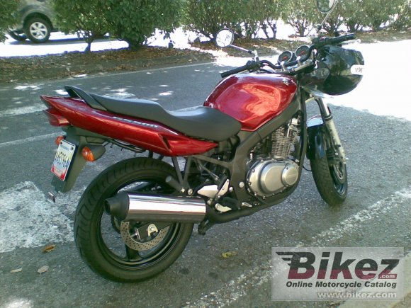 2006 Suzuki GS 500 photo
