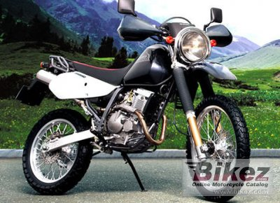 2008 Suzuki Djebel 250XC photo