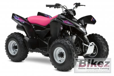 2009 Suzuki QuadSport Z90 Special Edition