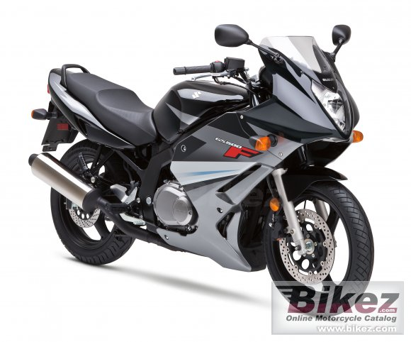 2010 Suzuki GS500F photo