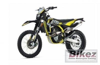 2020 SWM RS 300 R