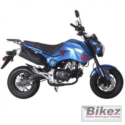 2021 Tao Motor Hellcat 125