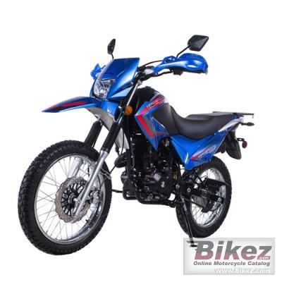 2021 Tao Motor TRB7