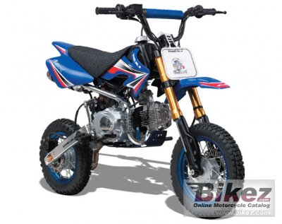 2011 Tauris Matador 125 photo