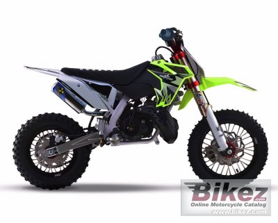 2020 Thumpstar MX 50 JR