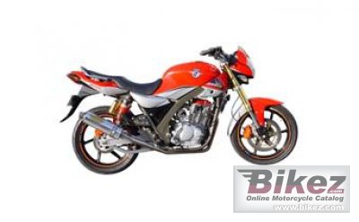 2011 Tiger Boxer 250 RS photo