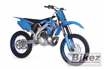 2010 TM Racing MX 250 photo